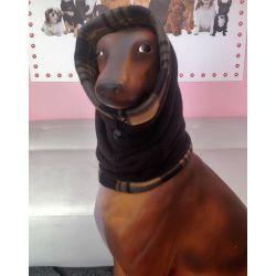 Scaldacollo Dog