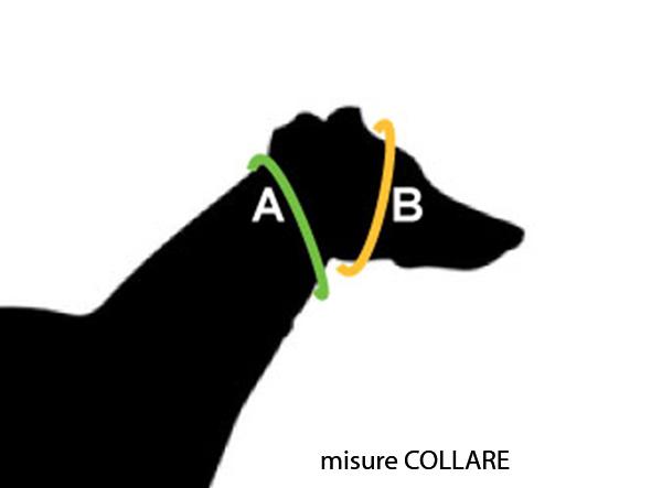 mis-collare_1.jpg